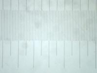 Objektmikrometer Mikrophotographie