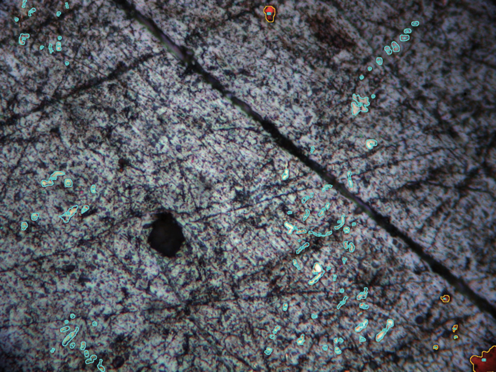 Lead sample that shows the identified silver and copper inclusions to be quantified.